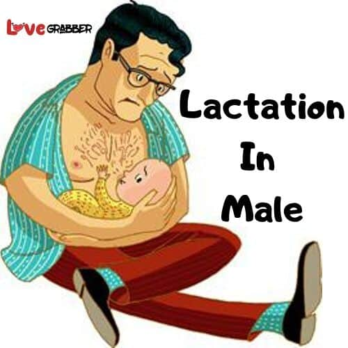 lactation in males